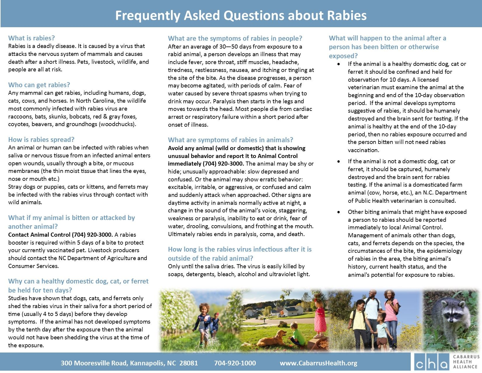 Frequently Asked Questions About Rabies